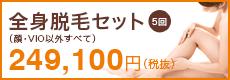全身医療脱毛セット 5回(顔・VIO以外すべて)249,100円(税抜)